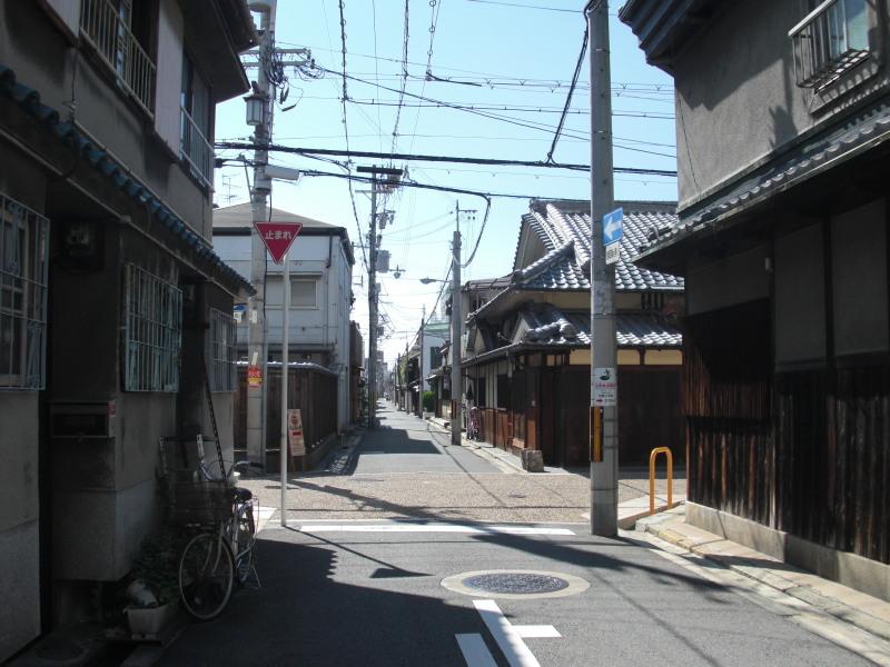 Kobea0005_2