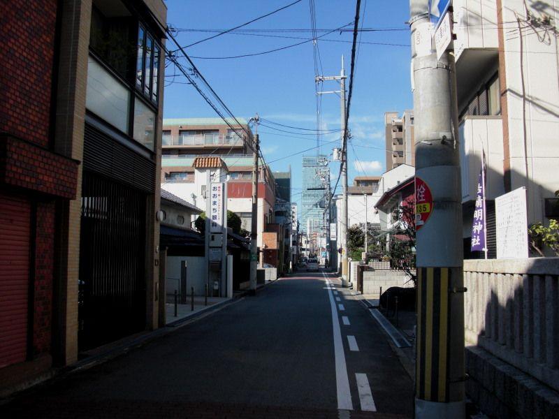 Kobea0005