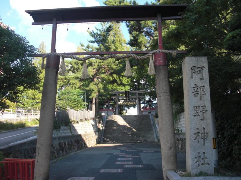 Kobea0024