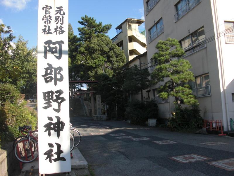 Kobea0025