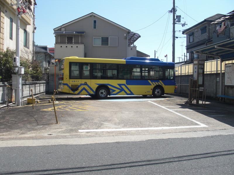 Kobea0013