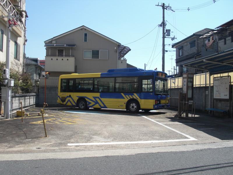 Kobea0014