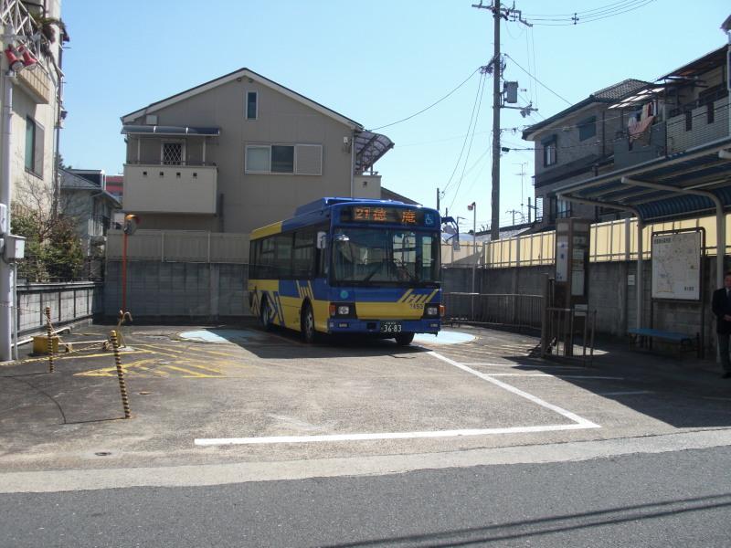 Kobea0015