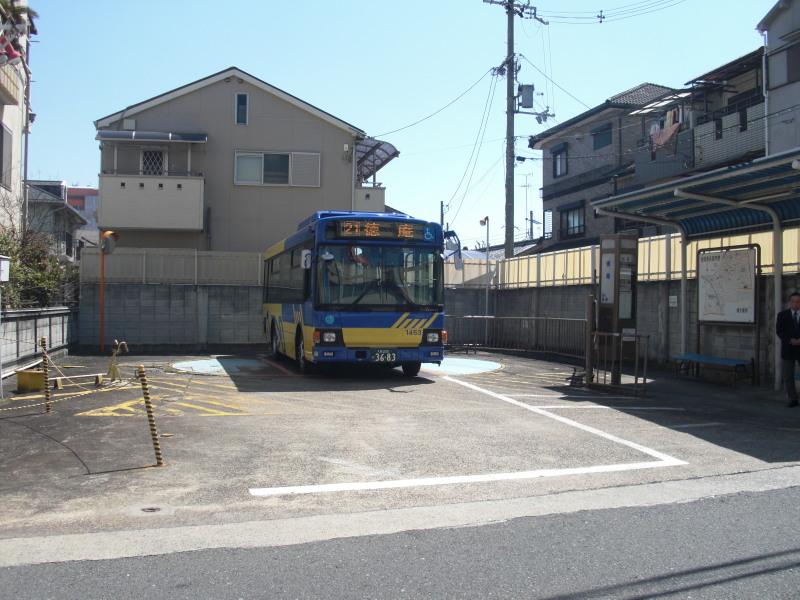 Kobea0016