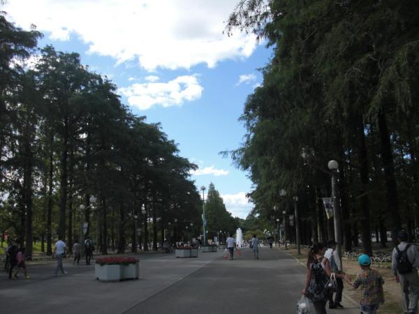 Kobea0002_3