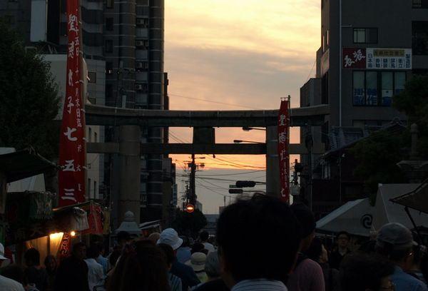 Kobea0006_3