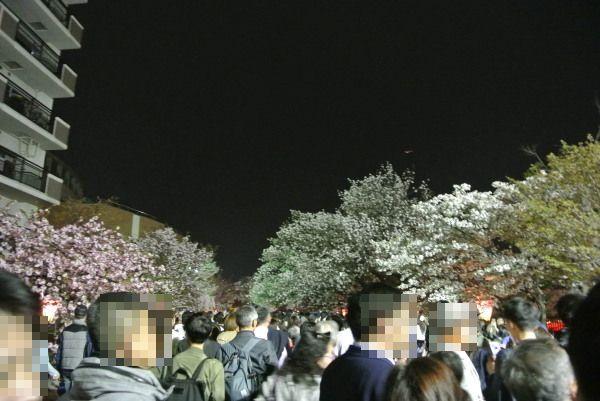 Tokyo10021_2